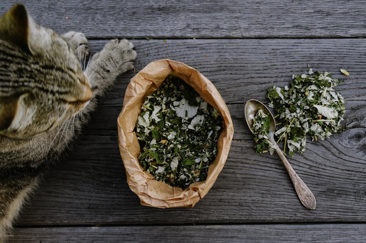 """Lauku tēja """"Meža aveņu lapas"""""""